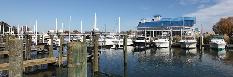 Bluewater Yacht Yard is a Safe Docking Haven